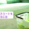 堺市でテニスコートをレンタルするには